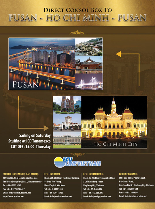 flyer-email-antwerp-pusan-hcm-zonestyle-thiet-ke-thuong-hieu